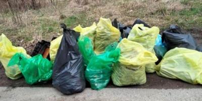 Wielkie sprzątanie jeziora. Zebrano 550 worków śmieci!